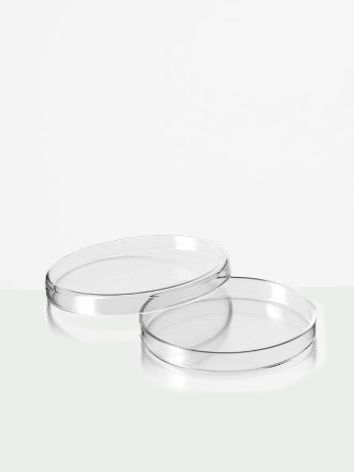 Placas de Petri